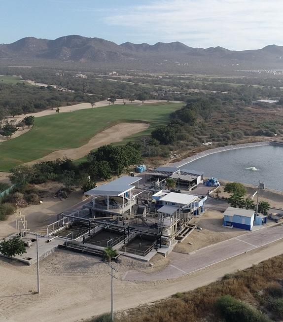 BioDaf Plant